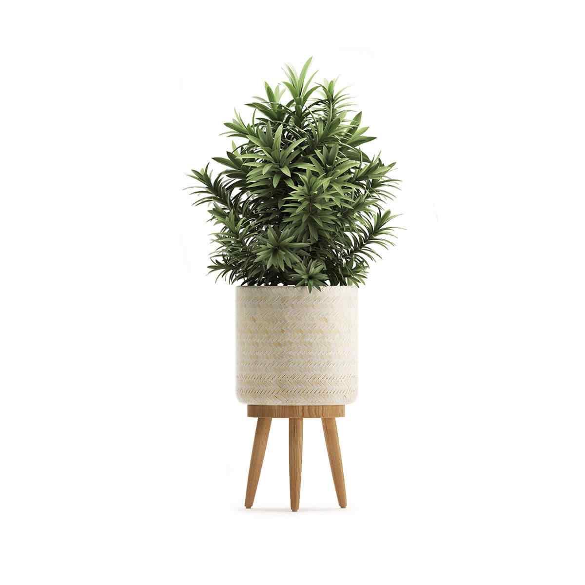 http://greenshade.com.au/wp-content/uploads/2018/09/product_07.jpg