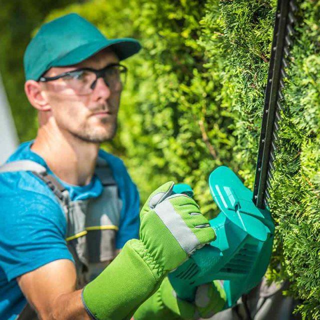 http://greenshade.com.au/wp-content/uploads/2019/08/team_05-640x640.jpg