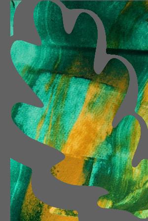 http://greenshade.com.au/wp-content/uploads/2019/10/floating_leaf_02.png