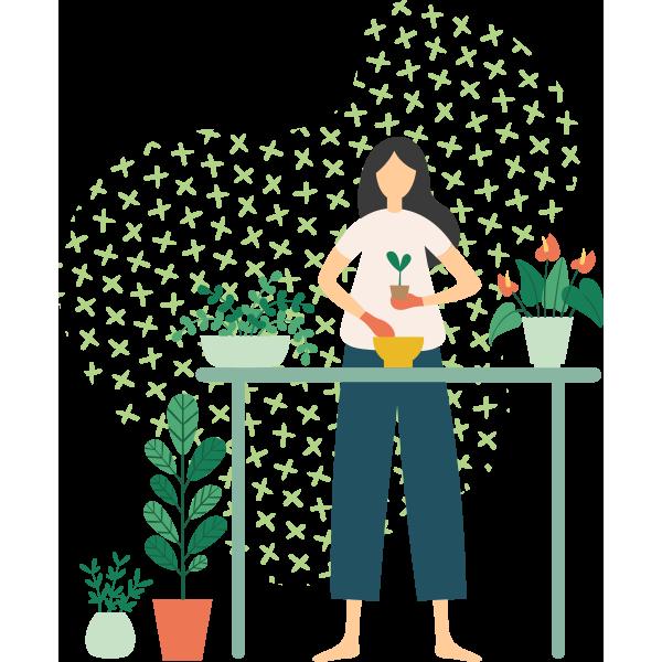 https://greenshade.com.au/wp-content/uploads/2019/11/illustration_01.png