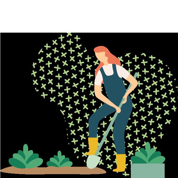 https://greenshade.com.au/wp-content/uploads/2019/11/illustration_02.png