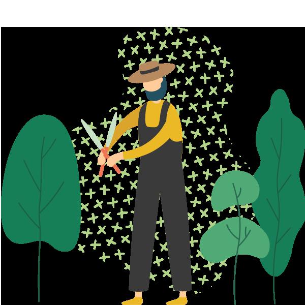 https://greenshade.com.au/wp-content/uploads/2019/11/illustration_03.png