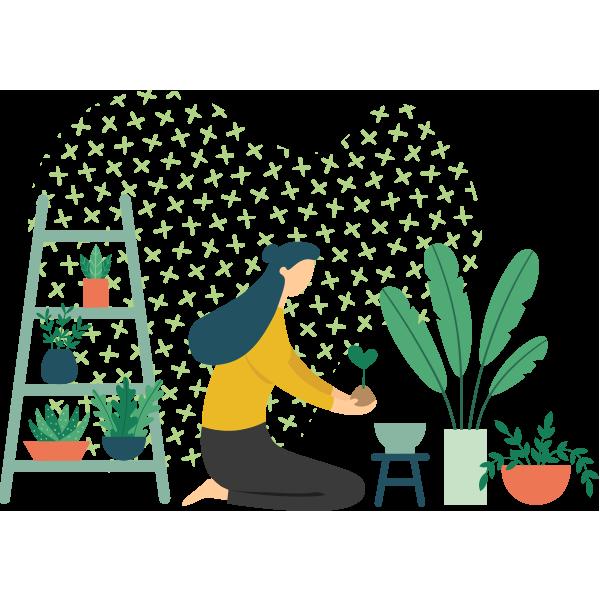 https://greenshade.com.au/wp-content/uploads/2019/11/illustration_delivery.png
